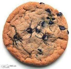 Use a toothpick to spread out the chocolate chips to look like spider legs