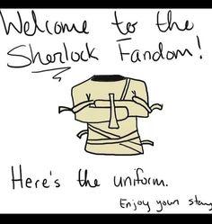 The Sherlock fandom