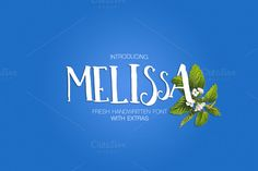 Melissa [INTRO 35%OFF] by DC Store on Creative Market
