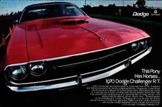 Propaganda do Dodge Challenger R/T 1970 como slogan Este Poney tem Cavalos ...