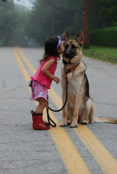 German Shepards are very loyal, sweet, and they are very protective of their family. Great dogs if you have kids.
