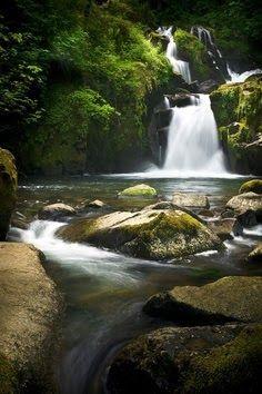 Sweet Creek falls, Oregon.
