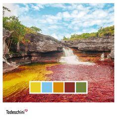 Caño Cristales, el río de los cinco colores, un lugar donde la naturaleza se impone a través de sus colores mágicos, su flora y fauna incomparables, sin duda un paraíso de tranquilidad. Colores que reflejan la belleza de la naturaleza en su máximo esplendor.  En Todeschini puedes usar en tu decoración una paleta de colores exclusiva para tus espacios.  #Diseñodeinteriores #Decoración #Todeschini #ambientes #mueblesamedida #arquitectura #colombia Fauna, Desktop Screenshot, Environment, Custom Furniture, Color Palettes, Spaces, Interior Design, Colombia, Naturaleza