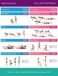 Week 20 Sunday Bikini Body Guide 2.0 by Kayla Itsines, weeks 13-24 (complete)