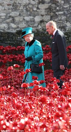 With almost all of the 888,246 poppies now in place, the Queen was rendered almost invisible as she walked through the sea of ceramic crimson blooms during a tour of the Blood Swept Lands and Seas of Red installation at the Tower of London. After Armistice Day on the 11th November, the poppies will be sold to raise funds for Help for Heroes and other military charities. 16th October 2014