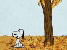 Snoopy im Herbst