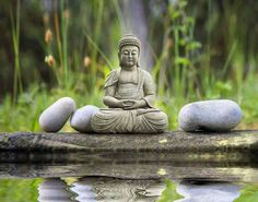 """"""" ... La patience est la plus grande des prières ... !!!""""  <'Bouddha'>.    7 điều quý giá nên """"học"""" suốt đời"""