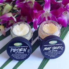 Lush lip scrubs are perfect for buffing away dead skin from your lips for softer, smoother lips!