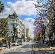 Surprise visit of an ordinary street.. #downtown Tunis, relaxing in this last Sunday of Winter. Shot for you by Ramzi Nabli, #Tunisia