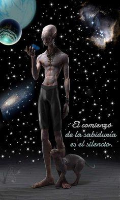 Alien Theories, Advaita Vedanta, Arte Alien, Nicolas Tesla, Bad Attitude Quotes, Spanish Inspirational Quotes, Prosperity Affirmations, Spiritual Messages, Trippy
