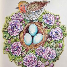 Twilight Garden with Derwent Inktense.  #mariatrolle #twilightgarden #adultcoloringbook #derwent #watercolor #ink