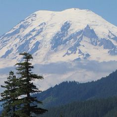 "Mt Rainier Washington This is ""my"" mountain. I was fortunate enough to grow up under the watchful gaze of this majestic beauty."