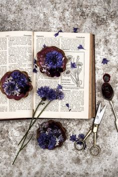 Glazed Blueberry Muffins with Cornflowers Recipe by Twigg studios