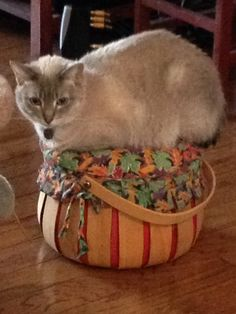 Jada decided to try out the pumpkin basket.