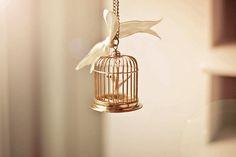 tiny bird in a tiny cage