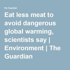 Eat less meat to avoid dangerous global warming, scientists say | Environment | The Guardian