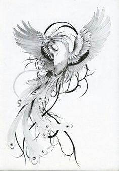 a phenix tattoo design. Bird Drawings, Tattoo Drawings, Body Art Tattoos, Small Tattoos, Sleeve Tattoos, Tatoos, Crow Tattoos, Ear Tattoos, Tattoos Skull