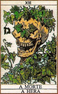 Death - Ivy - Baum Tarot - rozamira tarot - Picasa Web Albums
