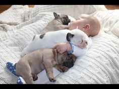 Cute Babies Sleeping With Dogs - Dog Loves Baby Videos 2017 - YouTube