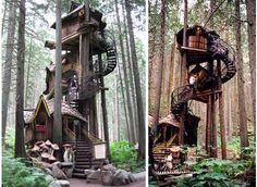 Fairytale Tree Houses: The 'Enchanted Forest' Wooden Tree House is Truly Overwhelming