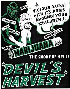 Toke Signals with Steve Elliott | Independent Cannabis News