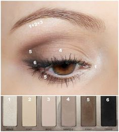 Eyeshadow diagram