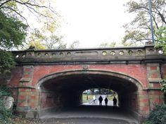 My favourite bit of NYC! - Avaliações de viajantes - Central Park - TripAdvisor