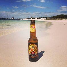 Happy Weekend from #Rotto ! Cheers Ryan for the photo  #MangoBeer #fruitbeer #westernaustralia #seeaustralia #rottnestisland #thisiswa #wabeaches #beerstagram #instabeer #summer by matsosbeer http://ift.tt/1L5GqLp