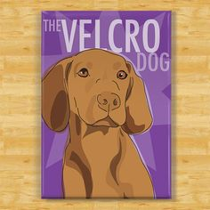 Vizsla Magnet - The Velcro Dog - Vizsla Gifts Dog Fridge Refrigerator Magnets  Killian