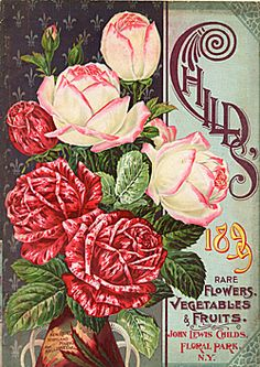 Catalog Information    Company Name:  John Lewis Childs    Catalog Title:  Child's Rare Flowers Vegetables and Fruits (1899)  Publication Information:  Floral Park, NY  United States  Category(ies) of Cover Art:  Mixed Fruit/Flowers/Vegetables  Roses