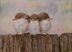 Three wrens