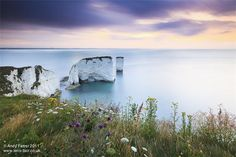old harry - Google Search