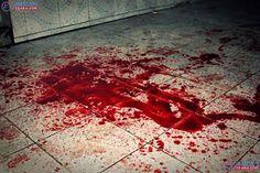 Bandidos invadem casa em Aquiraz e fazem uma chacina matando seis pessoas: ift.tt/2rowB7O