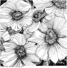 zentangle doodling | Zentangle, doodling & drawing / Anemones 20 July 2009 by *Artwyrd