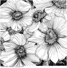 zentangle doodling | Zentangle, doodling & drawing / Anemones 20 July 2009 by *Artwyrd