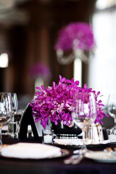 Gorgeous modern color palette of fuchsia and black. So sophisticated!