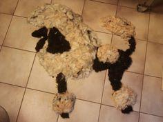 knutselen met hondenhaar...creative with doghair