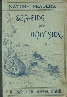 "Vintage Book Cover ~ ""Seaside and Wayside"""