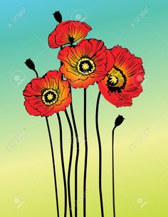 Image result for free vector poppy