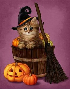 Halloween kitten in a bucket of pumpkins with a Jack-o-Lantern pumpkin and a broomstick dibujos gatos Retro Halloween, Vintage Halloween Decorations, Halloween Tags, Halloween Pictures, Holidays Halloween, Halloween Themes, Halloween Crafts, Happy Halloween, Halloween 2019