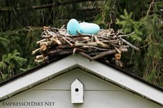 Create a giant DIY birds nest (with eggs, of course) for your garden. It's easy to make with some scrap branches in an afternoon.