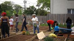 Grow Your Own: Suburban Gardening: It is a real Community Affair..