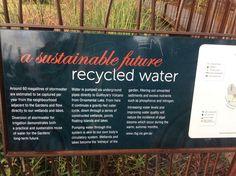 Underground Garden, Sustainability, Melbourne, The Neighbourhood, Sustainable Development, The Neighborhood