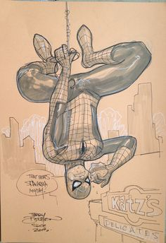 Spider-Man by Terry Dodson