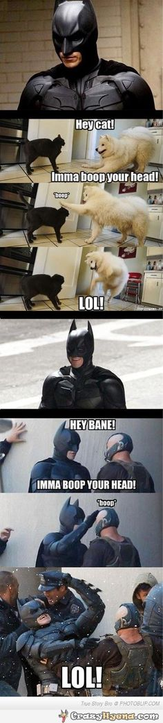 cat-batman-bane-boop-your-head-image