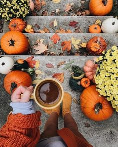 🍁  Autumn is our favourite season here at Koolbadges HQ (closely followed by Winter) We love Halloween, bonfire night & the way the leaves change colours into beautiful yellows, oranges and browns 🍂  What is your favourite season? #Autumnvibes #Autumniscoming Herbst Bucket List, Autumn Cozy, Autumn Aesthetic, Fall Wallpaper, Autumn Photography, Photography Kids, Fall Pictures, Halloween Pictures, Hello Autumn
