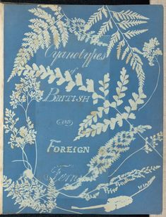 Cyanotypes of British and Foreign Ferns; Anna Atkins (British, 1799 - and Anne Dixon (British, 1799 - Cyanotype; Sun Prints, Nature Prints, Rhapsody In Blue, Illustration Botanique, Getty Museum, Once Wed, History Of Photography, Blue Books, Atkins