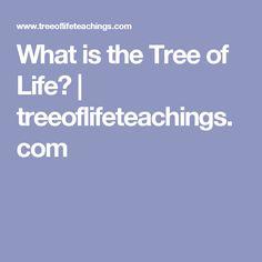 What is the Tree of Life? | treeoflifeteachings.com