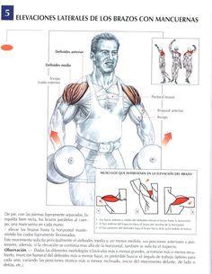 Elevaciones laterales de los brazos con mancuernas #ejercicios #gym #fitness #fit