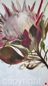 by Nicola Firth Oil ~ x Protea Art, Protea Flower, Botanical Art, Botanical Illustration, List Of Paintings, Plant Painting, Pastel Drawing, Arte Floral, Flower Images